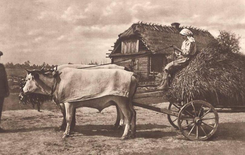 17. Атмосферне фото з Волині, 1930-ті роки.